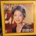 【二手LP寄售】鄧麗君 / 忘不了