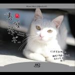 《春・夏・秋・冬》( HQCD ) <br>The Beauty Of Seasons / 作曲:藤原育郎