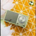 Mozart 調頻收音機 ( 粉綠色 )