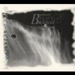 莎拉燕子樂隊:黑鳥 (挪威原裝進口 CD)<br>Siri's Svale Band:Black Bird