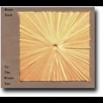 寒冬烈日( CD )<br>To the Winter Sun<br>布魯斯‧史塔克 / 鋼琴