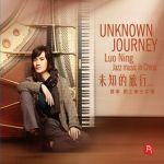 未知的旅行 ( CD 版 )<br>羅寧,爵士樂在中國<br>(線上試聽)